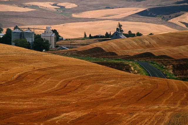 rural countryside - agricultural business in bulgaria