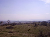 10 010 sq m Agricultural Land 31 km Away From Burgas