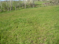 Development land in Primorsko