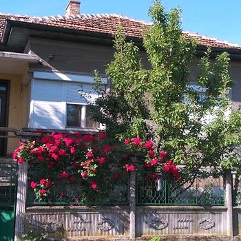the physical properties of the danube river Bulgarian house offers variety of properties on river danube.