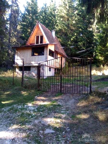 House for sale in the mountains near Dospat