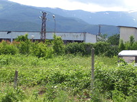 Land for sale near Berkovitsa