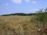 Regulated land in Elhovo