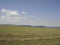 Agricultural land in Ruse