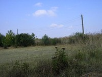 Cheap Land in Elhovo