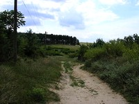 Cheap Land With Demolished House in Elhovo