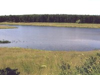 Land With A Lake in Primorsko