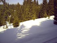 Regulated land in Pamporovo